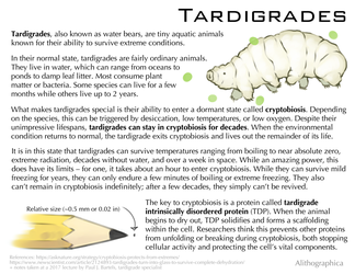 Science Fact Friday: Tardigrades by Alithographica