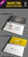 Marketing Business Card Bundle by kh2838