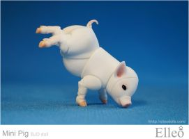 Mini Pig doll bjd 14 by leo3dmodels