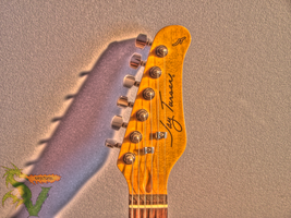 guitar HDR by shilpinator