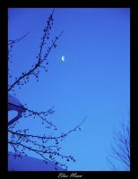 + Blue Moon by silentglaive