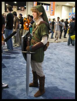chicks dig link by captain-ass-kick