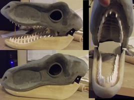 Raptor head blank by Monoyasha