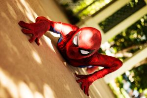 Spider Man by sintar