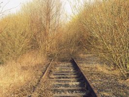 As the tracks disappear by ZipLightyear