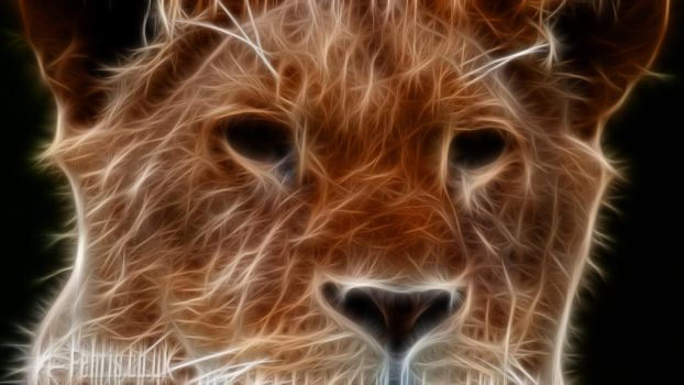 Fractal Lion #02 by FenrisOswin