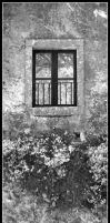 The Window BW by Digaas