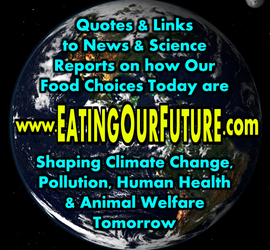 Eating Our Future Site Logo: Save The Planet Meme by eatingourfuture