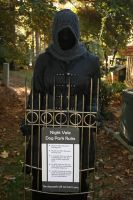 Welcome to Nightvale: The Hooded Figure by Steamstress