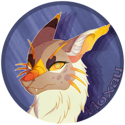 Hoxau Gift Icon by AmnesiaMoons