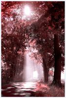 the road is blessed II by werol