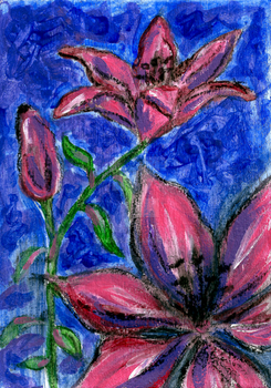 Pink Lilies Charcoal Acrylic Painting by LoVeras