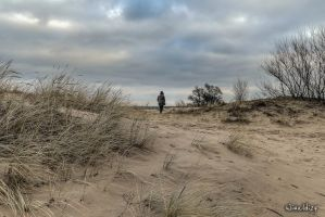On the dunes by wiwaldi24
