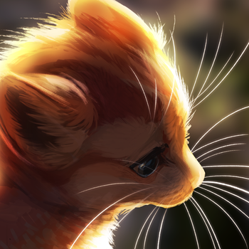 Whiskers inc. by Mewitti