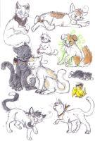 Hetalia Kitties by Vampirkaetzchen