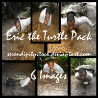 Eric the Turtle Pack by SerendipityStock