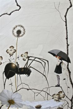 The Spider and the Fly by ShannonStamey