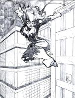 Batgirl Sketch by Ari-Spike-Nadelman