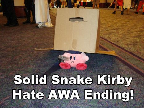 AWA 14 Ending by Mpeg