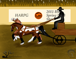BMa Draft Show- Team Driving 2 by Shayla-Estate