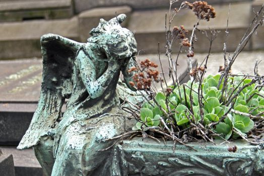 Don't blink! by attomanen