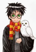 Harry and Hedwig by batteryfish