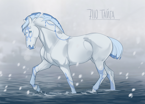 7110 Taiga by NorthEast-Stables