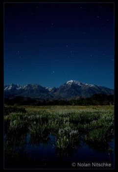 Sierras and Iris by Moonlight by narmansk8