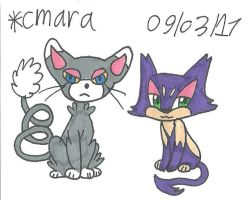 Glameow and Purrloin
