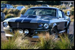 Eleanor Mustang by spath