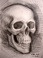Skull (Loose Sketch) by myconius
