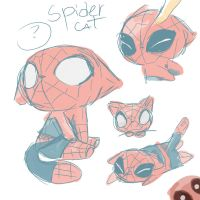 spidercat by Konniwa