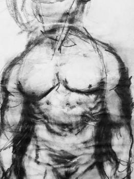 Torso drawing by ProfessorPicasso