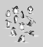 Penguins by Seabasss