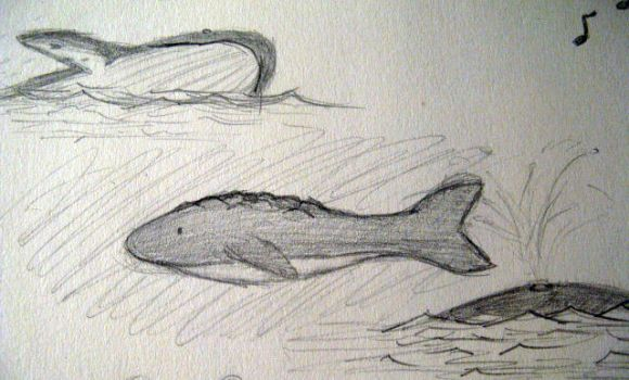 whales by paintbrush-turtle
