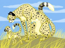 Cheetahs by swift-whippet