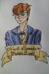 Newt Scamander by MusicalNotes334