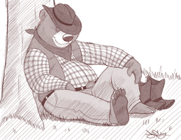 Sleeping Cowboy-bear by Dj-Rodney