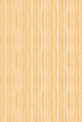 wood for retina by will-yen