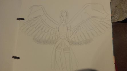wings by Mikal04-12