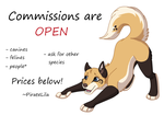 Commissions are open by PirateLila