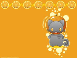 Orange Fat Cat Wallpaper by lafhaha