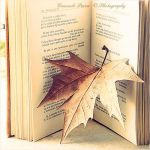 Waiting for Autumn... by Aeternum-designs