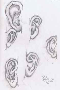 Ear sketches by Pestiis