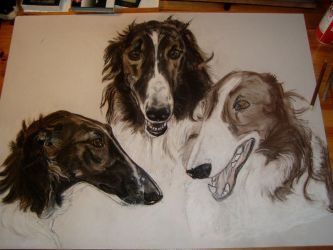 WIP barsois 2 commission by fauna-art