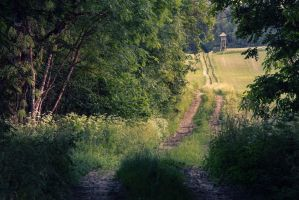 the way to paradise 2 by Mark-Heather