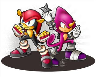 We Can Take 'Em: Mighty and Espio in Sonic Boom by HavocGirl