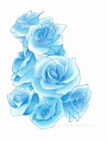 Blue Roses by Dhavita