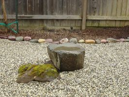 Rock Garden February 2011 4 by CFA61