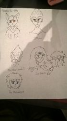 Completed requests by Lucasfan375